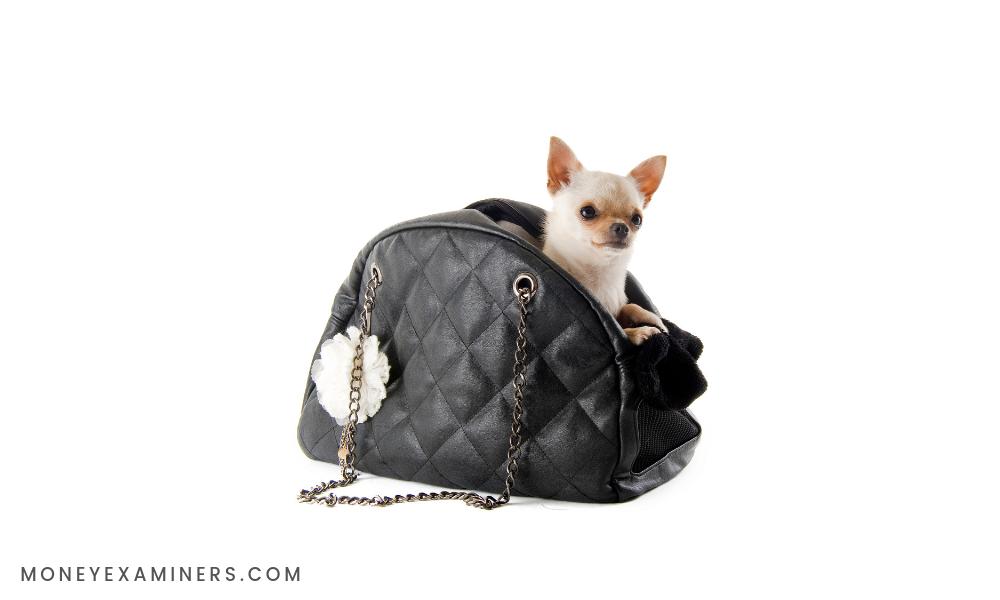 Most Expensive Handbags - MoneyExaminers.com
